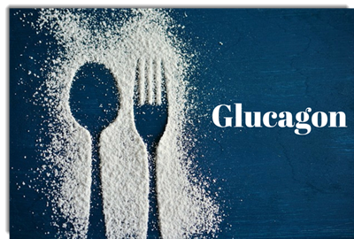 Glucagon: What is it, what does it do and how does it differ from Insulin