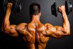 tamoxifen bodybuilding